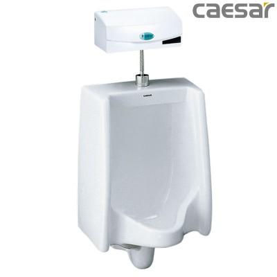 Bồn tiểu nam treo tường Caesar U0240