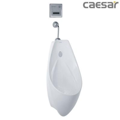 Bồn tiểu nam treo tường Caesar U0267