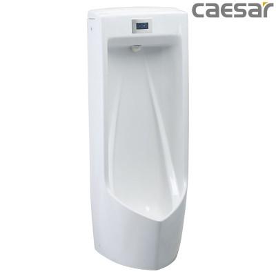 Bồn tiểu nam treo tường Caesar UMP0283